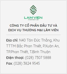 cong-ty-co-phan-dau-tu-va-dich-vu-thuong-mai-lam-vien