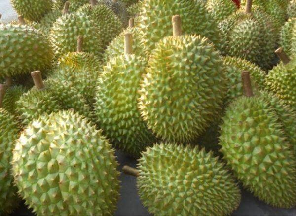 Có hai loại quả hưng thịnh trong phong thủy, Rằm tháng Giêng nên cúng - 5