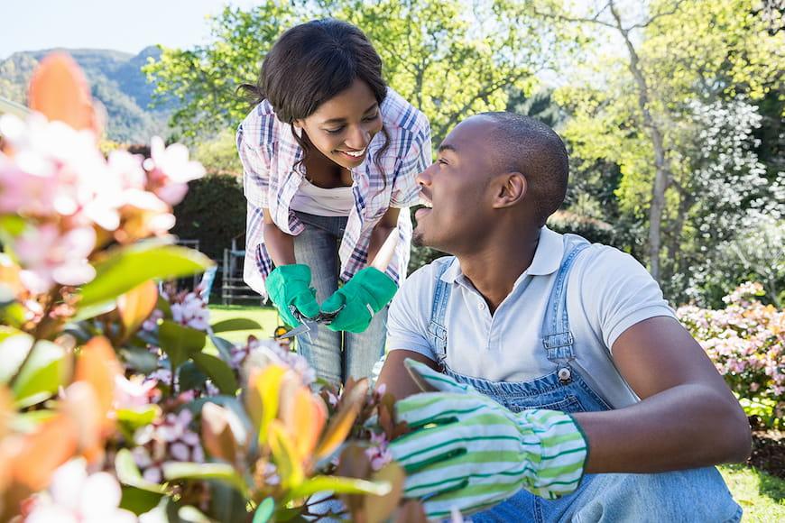 Làm thế nào để chăm sóc cho khu vườn của bạn