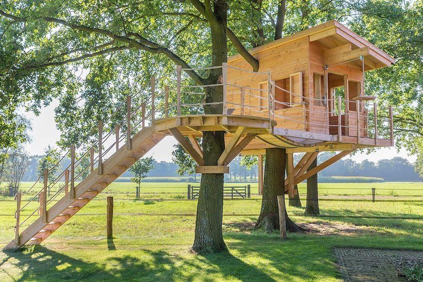 8 lời khuyên để xây dựng ngôi nhà trên cây ở sân sau của riêng bạn