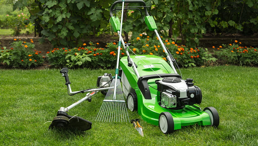 Hướng dẫn mua thiết bị chăm sóc cỏ
