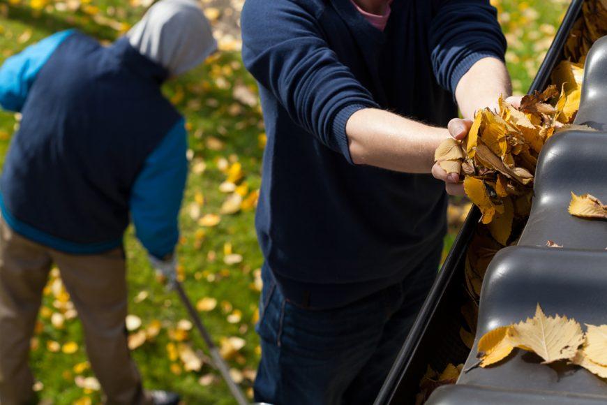 11 Công việc Bảo trì Mùa thu cần làm Cuối tuần này